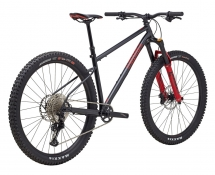 Marin El Roy Bike