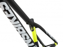 NS Bikes Liar Frame